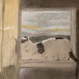 drawing of cat in window