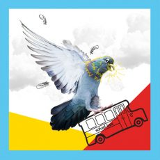 Pigeon with a school bus